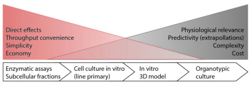 Figure 3: Schematic view of features for different culture model: from fractions to organotypic culture