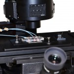 temperature-stage-microscope-heater-cooler