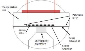 evaporation-sealed-chamber