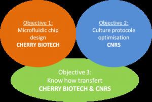 SpOC objectives