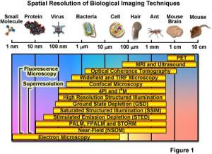 Super-resolution-microscopy-Comparation-techniques