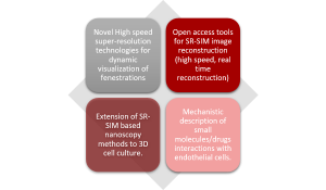 super-resolution-deliver-nanoscopy