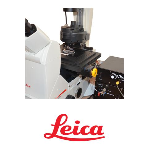 cherrytemp-leica-microscope