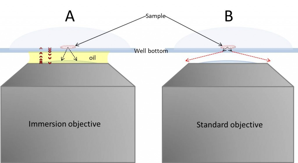 Figure 1: Scheme of immersion (A) and dry (B) setting in an inverted microscope. Immersion oil is used to obtain high quality images ta high magnifications. The main drawback is that immersion oil will establish a thermal bridge (heat sink) between the objective and the sample. Black broken arrows = light path; red broken arrows = light diffracted; red arrows = bi-directional heat flow.