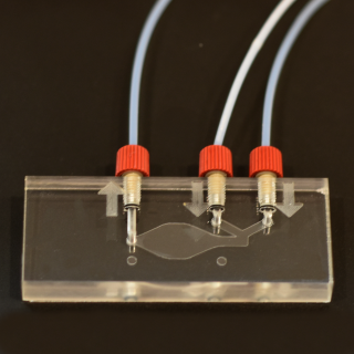 cherrytemp-chip-and-connectors