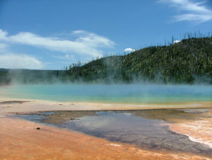 The Grand Prismatic Spring in Yellowstone (USA), with waters at more than 70°C, is the habitat of thermophile communities