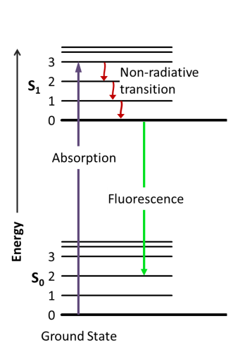 Absorption and emission phenomena exploited by a standard fluorescence microscopy. An electron in the ground state can be excited by an incident photon. If the energy is strong enough the electron is sent to a higher energetic level, relaxation of the electrons occurs via nn-radiative transition and eventually by emitting a photon.