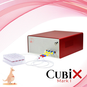 Cubix mark I Adelaide south australia
