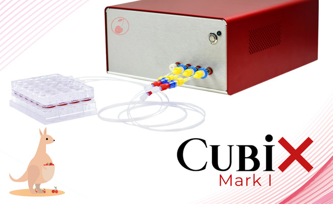 CubiX showed up in Australia