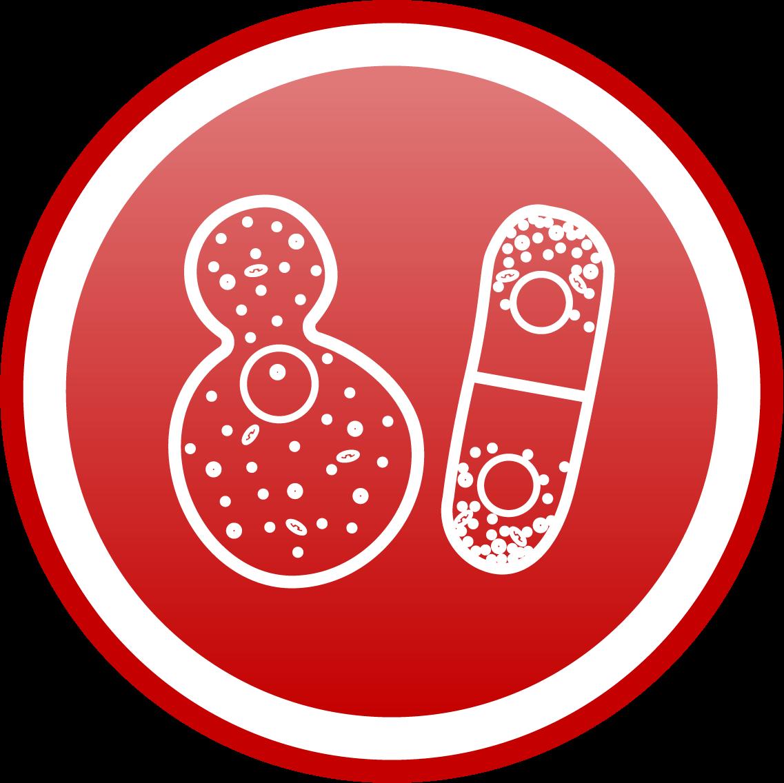 yeast pack-cherrybiotech-organ-on-a-chip-cherrytemp