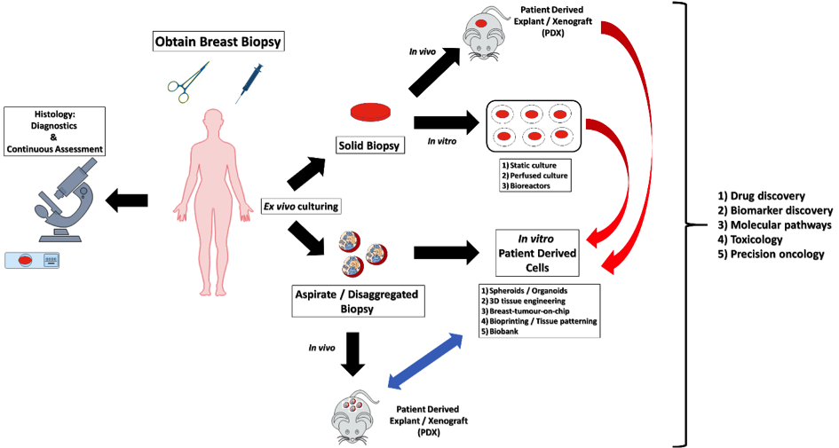 breast-cancer-applications