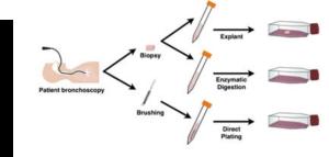 Cherry_Biotech_lung_biopsies_alternative_methods